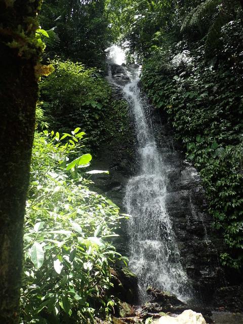 P6210826.JPG - 再訪  關西  馬武督探索森林