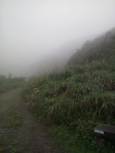 DSC_2827.JPG - 瑞芳  牡丹山
