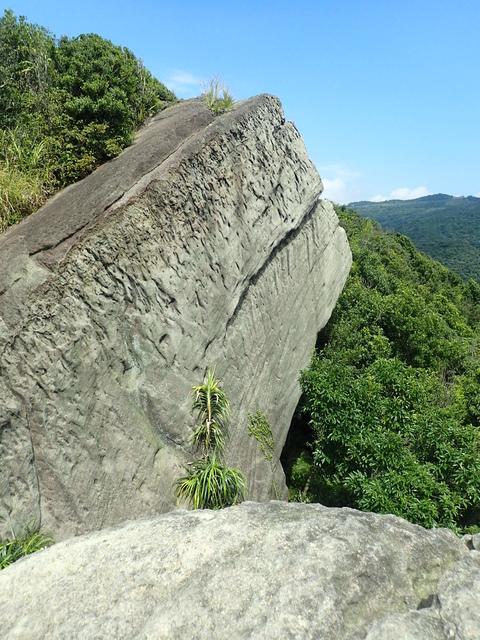 P8136313.JPG - 汐止  新山夢湖