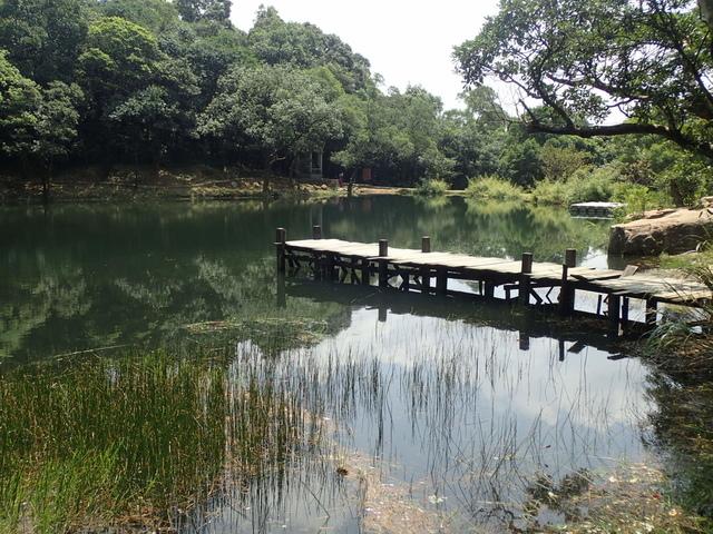 P8136331.JPG - 汐止  新山夢湖