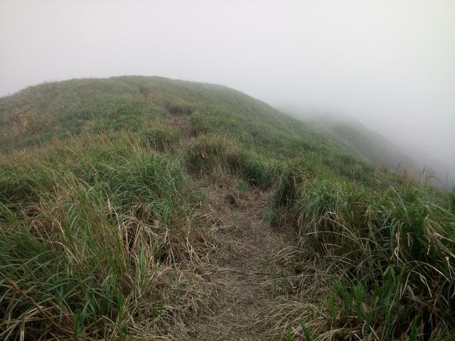 DSC_2862.JPG - 瑞芳  牡丹山