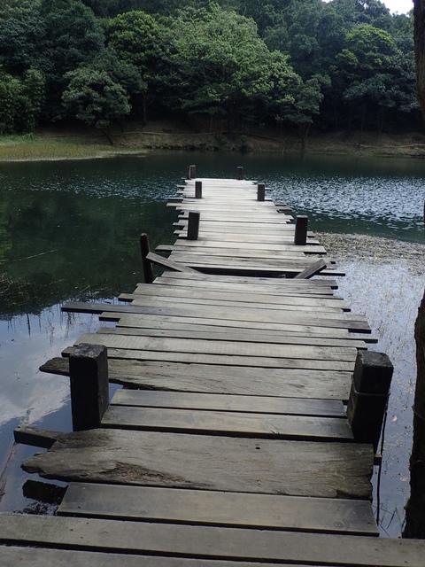 P8136333.JPG - 汐止  新山夢湖