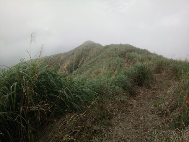 DSC_2863.JPG - 瑞芳  牡丹山