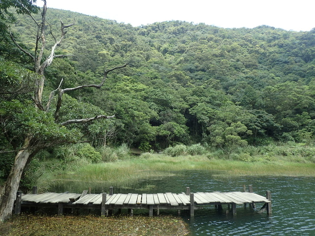 P8136334.JPG - 汐止  新山夢湖