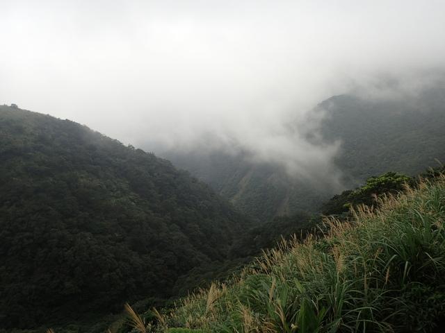 P1203543.JPG - 瑞芳  牡丹山
