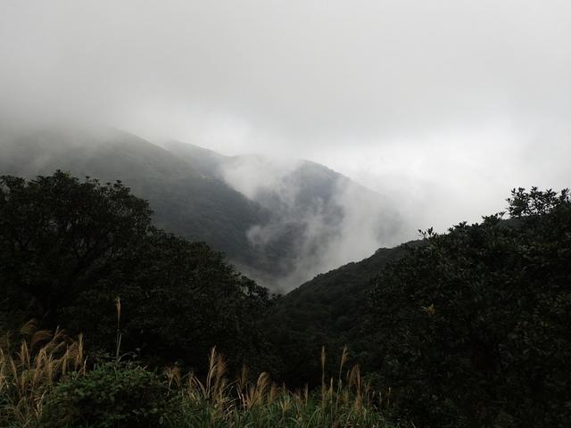 P1203563.JPG - 瑞芳  牡丹山