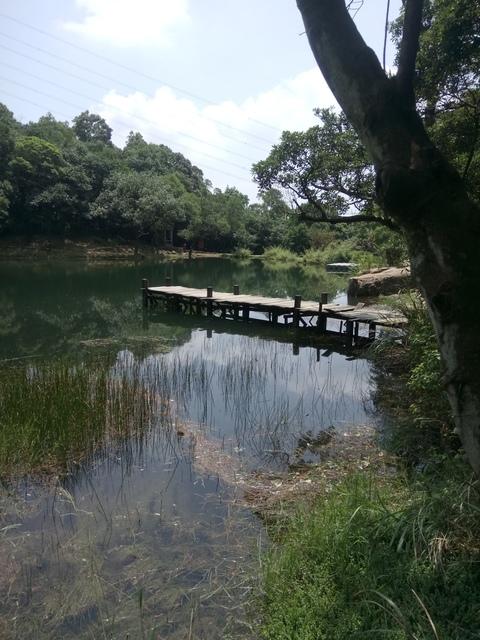 DSC_8296.JPG - 汐止  新山夢湖