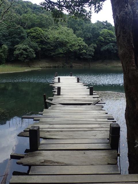 P8136332.JPG - 汐止  新山夢湖