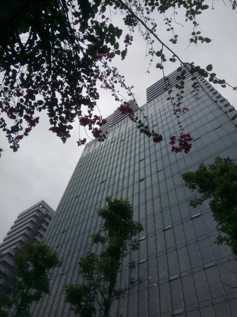 DSC_9588.JPG - 聯合報新大樓