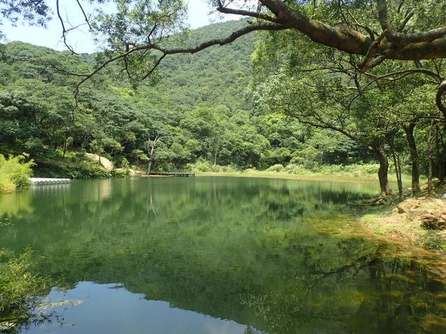 P8136344.JPG - 汐止  新山夢湖