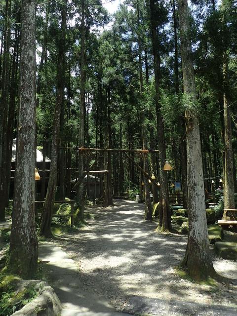 P6210804.JPG - 再訪  關西  馬武督探索森林
