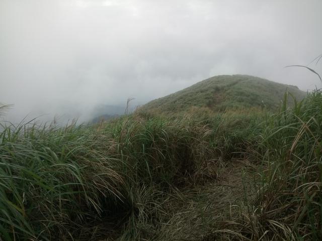 DSC_2860.JPG - 瑞芳  牡丹山