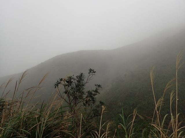 P1203517.JPG - 瑞芳  牡丹山