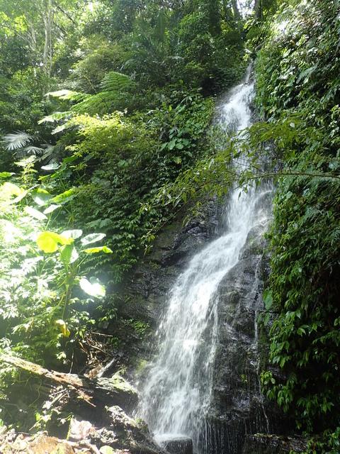 P6210827.JPG - 再訪  關西  馬武督探索森林