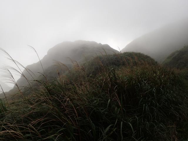 P1203428.JPG - 瑞芳  牡丹山