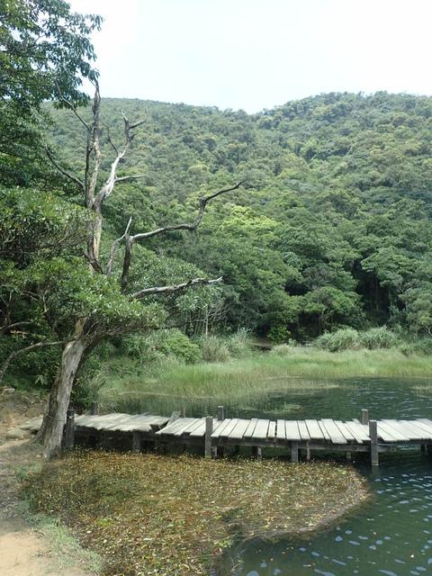 P8136336.JPG - 汐止  新山夢湖