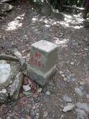 復興  東眼山森林步道:DSC_8954.JPG