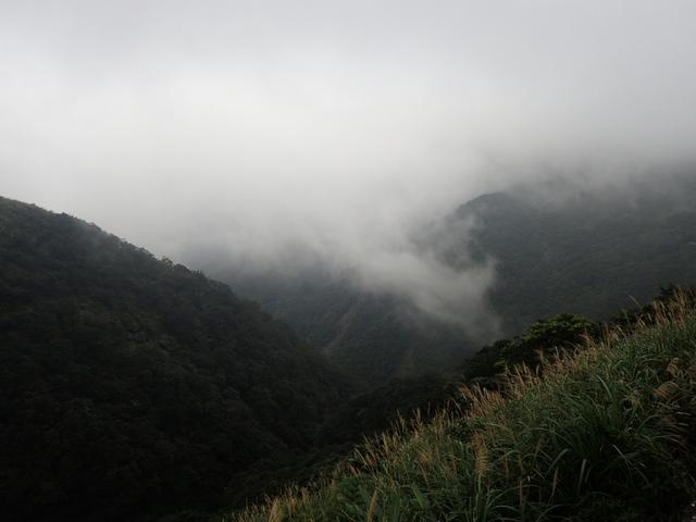 P1203544.JPG - 瑞芳  牡丹山