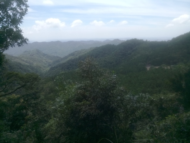 DSC_4169.JPG - 再訪  關西  馬武督探索森林