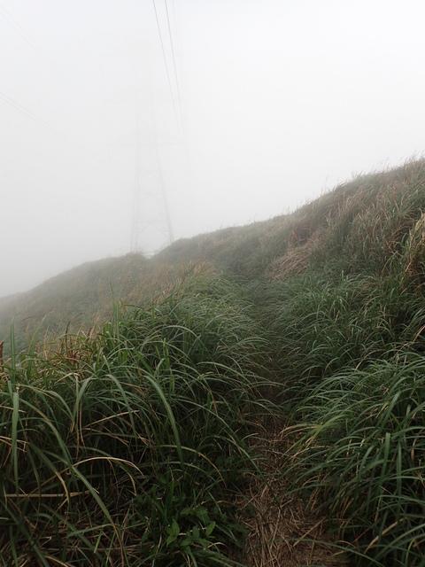 P1203487.JPG - 瑞芳  牡丹山