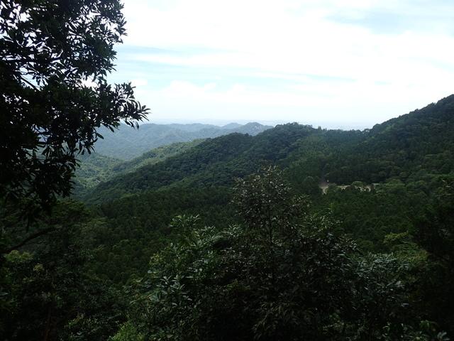 P6210832.JPG - 再訪  關西  馬武督探索森林