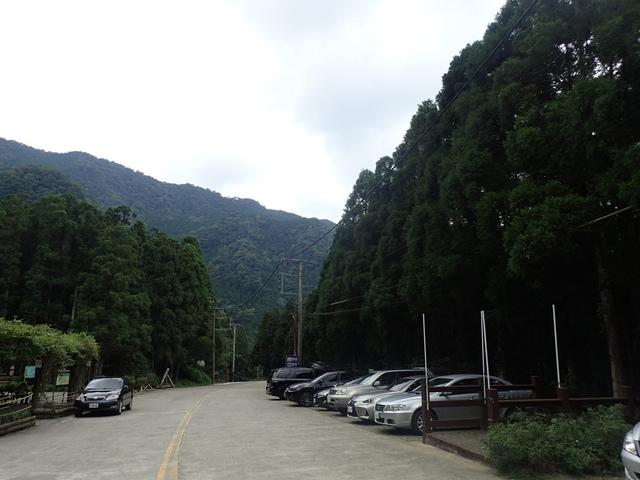 P6210844.JPG - 再訪  關西  馬武督探索森林