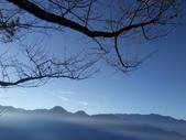 清境農場  晨光之美:DSC_6619.JPG