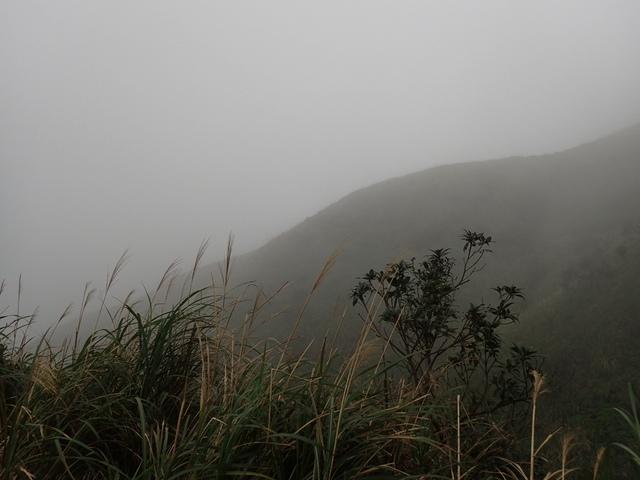 P1203516.JPG - 瑞芳  牡丹山