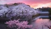 Hidenobu  Suzuki:6S2A5430-bp-58f8c272dee11__880.jpg