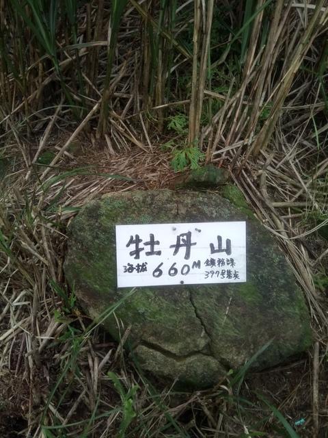 DSC_2849.JPG - 瑞芳  牡丹山