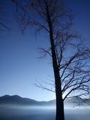 清境農場  晨光之美:DSC_6621.JPG