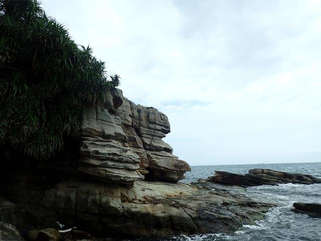 P5056628.JPG - 金山  燭臺雙ˊ峙 神秘海岸
