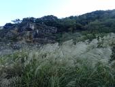 北投  硫磺谷  (01):PB247298.JPG