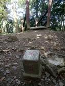 復興  東眼山森林步道:DSC_8956.JPG