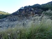 北投  硫磺谷  (01):PB247301.JPG