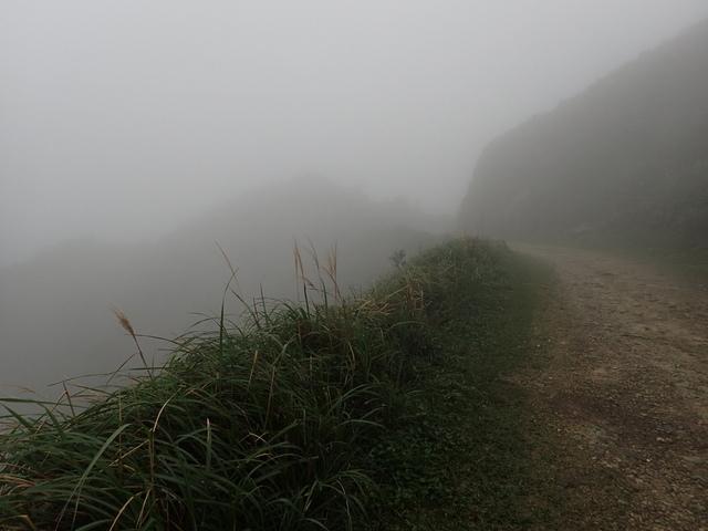 P1203414.JPG - 瑞芳  牡丹山