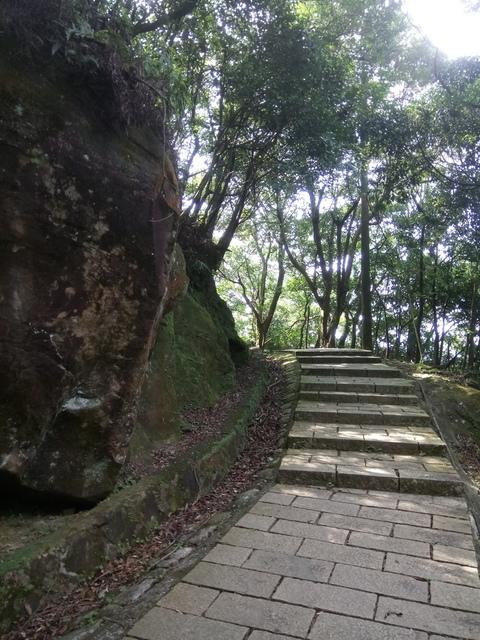 DSC_8276.JPG - 汐止  新山夢湖