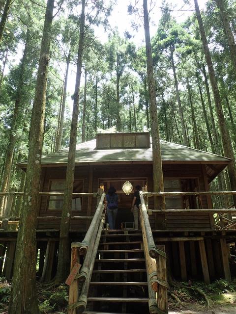 P6210806.JPG - 再訪  關西  馬武督探索森林