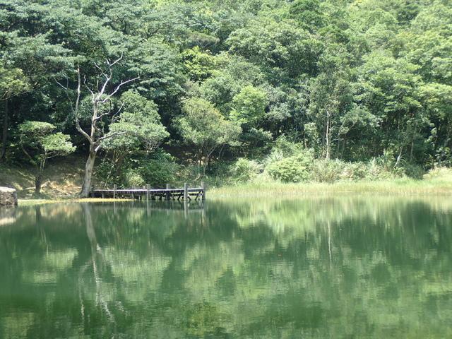 P8136352.JPG - 汐止  新山夢湖