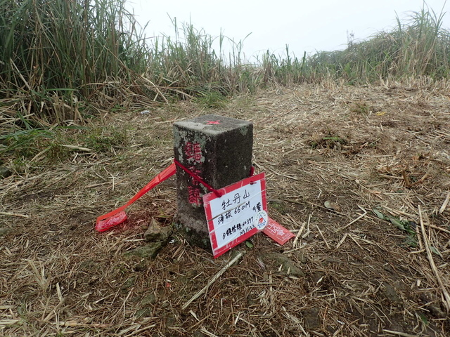 P1203490.JPG - 瑞芳  牡丹山