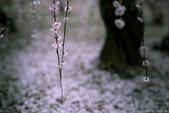 Hidenobu  Suzuki:Graine-de-photographe-Hidenobu-Suzuki-_-23.jpg