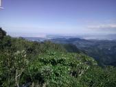復興  東眼山森林步道:DSC_8961.JPG