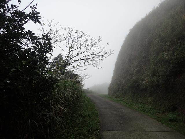 P1203410.JPG - 瑞芳  牡丹山