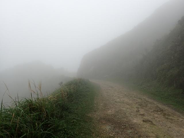 P1203415.JPG - 瑞芳  牡丹山