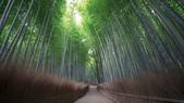 Hidenobu  Suzuki:Graine-de-photographe-Hidenobu-Suzuki-_-33.jpg