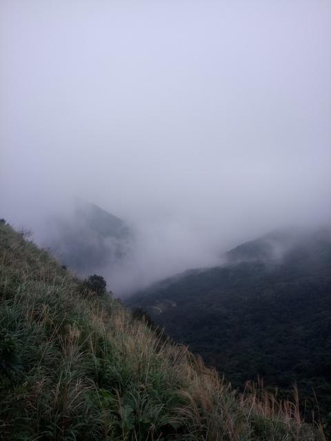 DSC_2902.JPG - 瑞芳  牡丹山