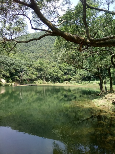 DSC_8303.JPG - 汐止  新山夢湖