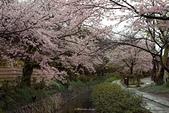 Hidenobu  Suzuki:1468055264034_image.jpg