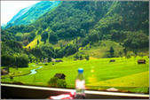 瑞士黃金列車Golden Pass由盧森Luzern開到茵特拉根Interlaken:20130619074.jpg