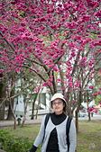 20150215-16蕙蓀林場>彰化北斗:DSC_6110.jpg